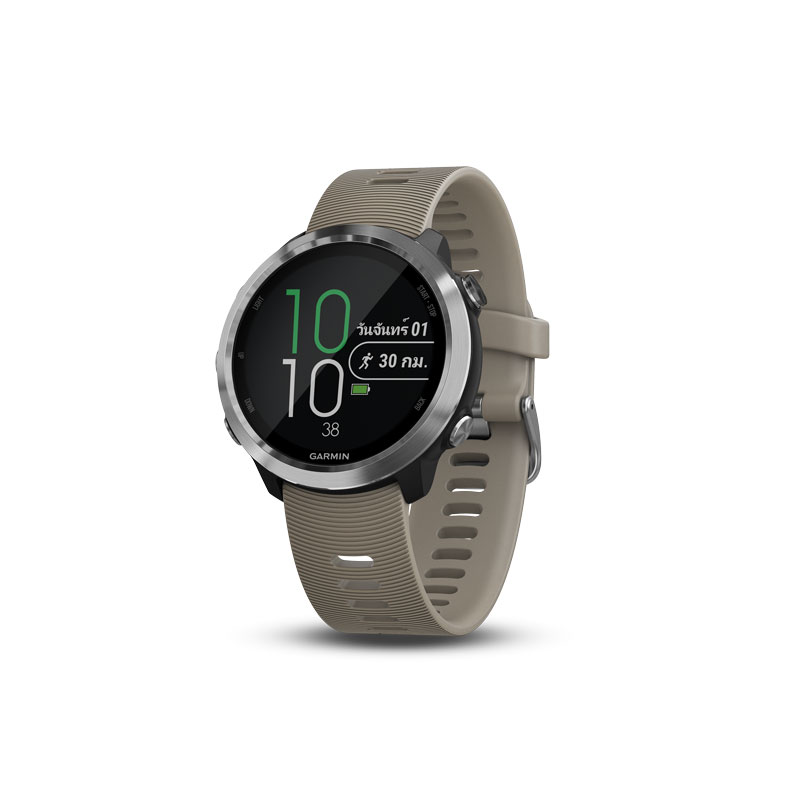 Garmin Forerunner 645 Sport Watch