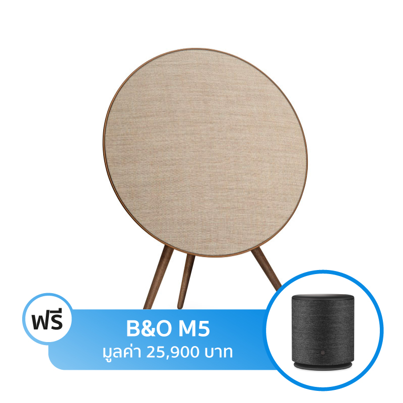 ลำโพง B&O Play Beoplay A9 by Bang & Olufsen