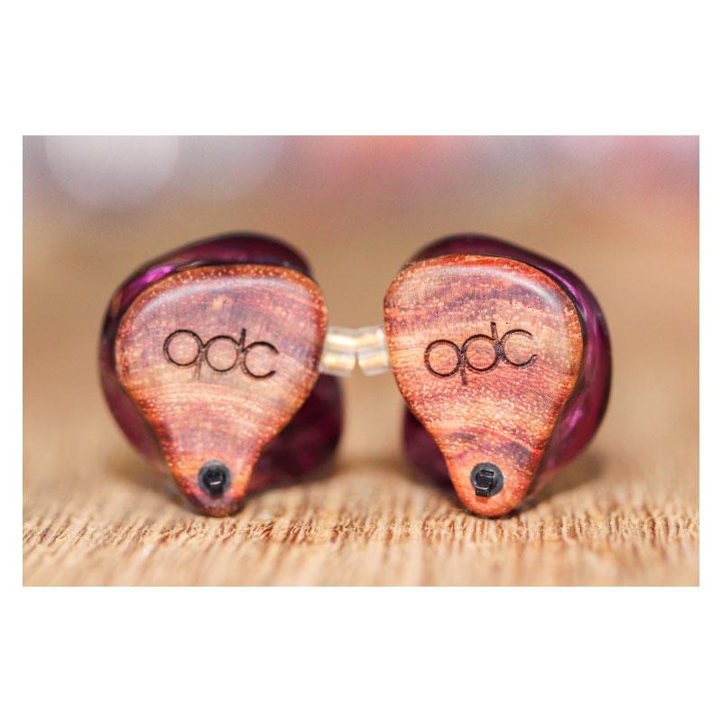 หูฟัง QDC Gemini In-Ear
