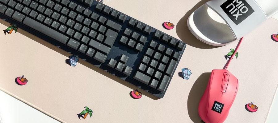 เมาส์ Mionix Avior Gaming mouse รีวิว