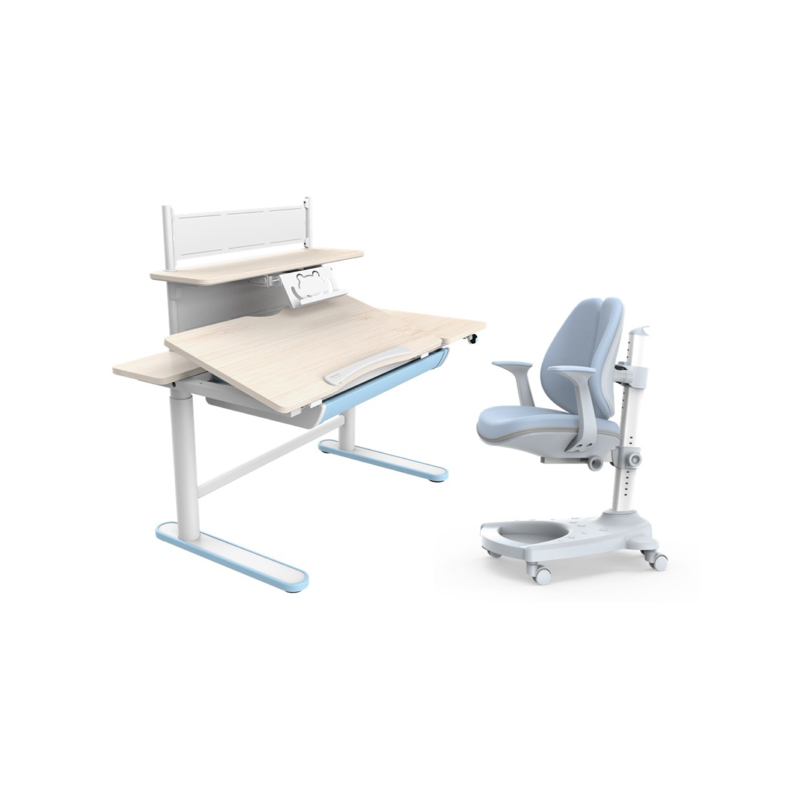 ชุดโต๊ะปรับระดับไฟฟ้าสำหรับเด็ก Flexispot Kids Set Single Motor Electric Height Adjustable Desk + Shelf + Ergonomic Chair (CD201-1106-BH+CD201-B30-BH+SC105)