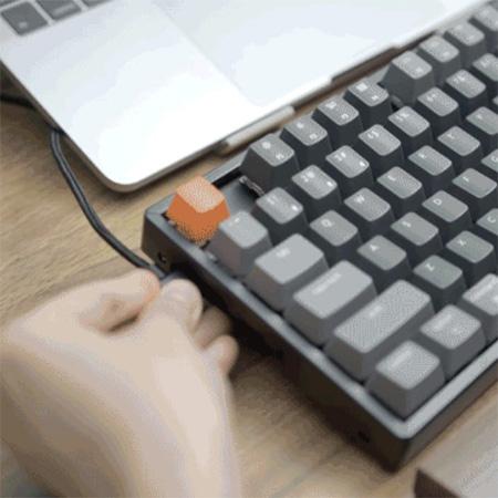 คีย์บอร์ด Keychron K8 Hot-swappable Wireless Mechanical Keyboard