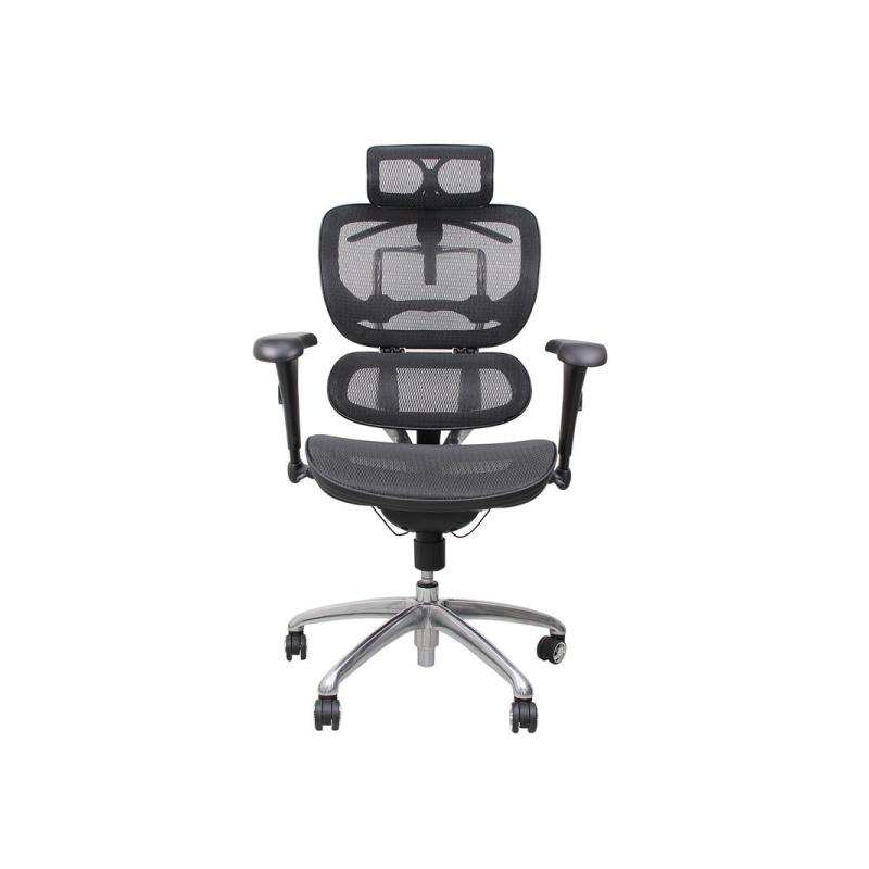 เก้าอี้เพื่อสุขภาพ Ergotrend Beyond Signature-01 Ergonomic Chair