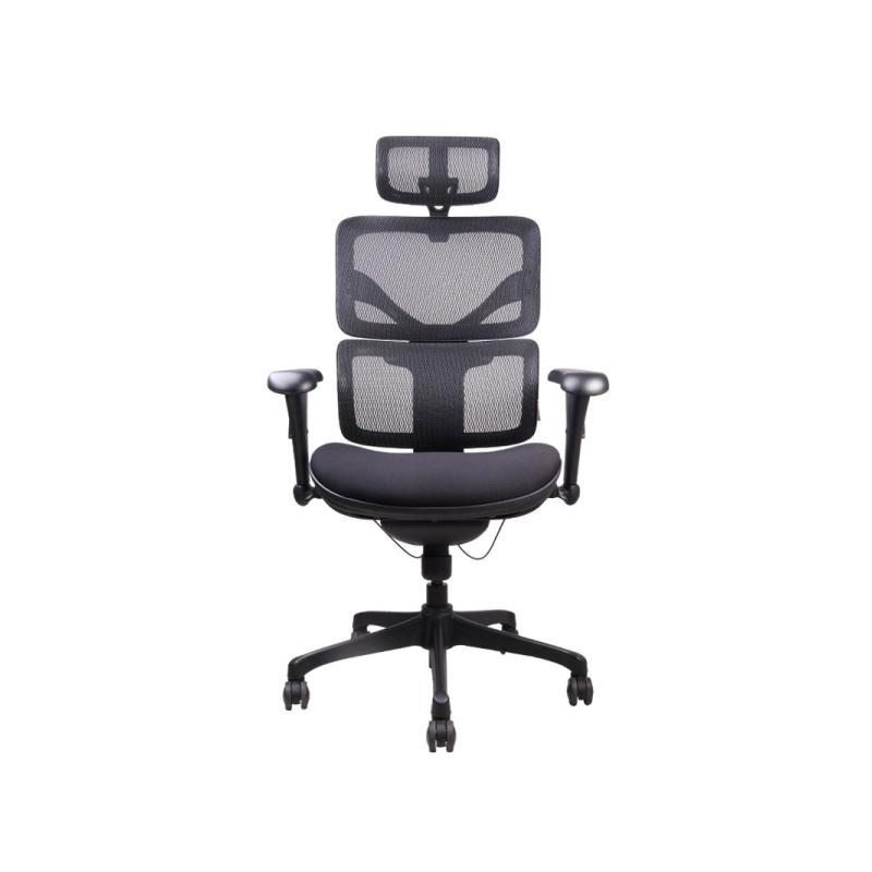 เก้าอี้เพื่อสุขภาพ Ergotrend DOOM-01BMF Ergonomic Chair