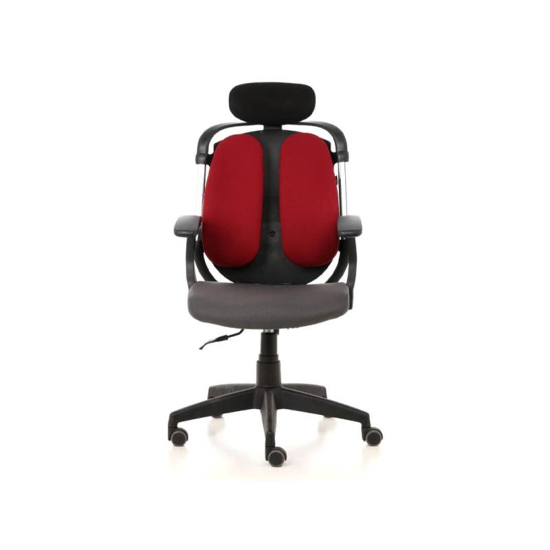 เก้าอี้เพื่อสุขภาพ Ergotrend Dual-03 Ergonomic Chair