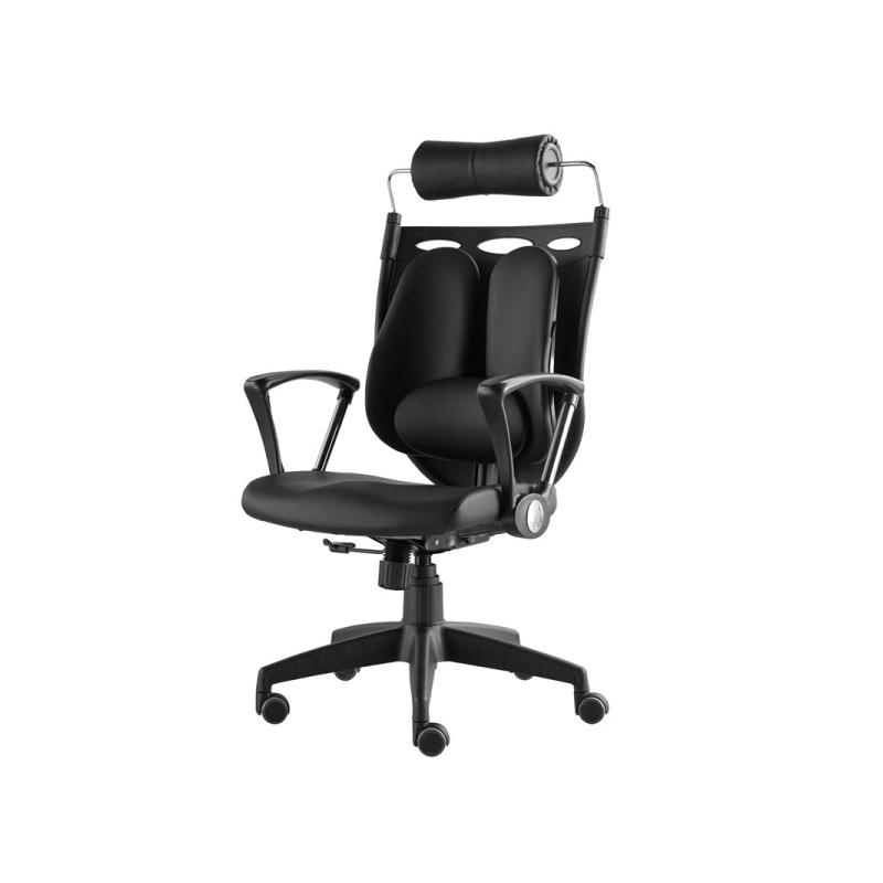 เก้าอี้เพื่อสุขภาพ Ergotrend Dual NL-05BPP Ergonomic Chair