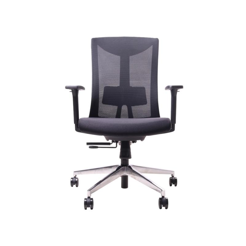 เก้าอี้เพื่อสุขภาพ Ergotrend Dual-X1 Ergonomic Chair