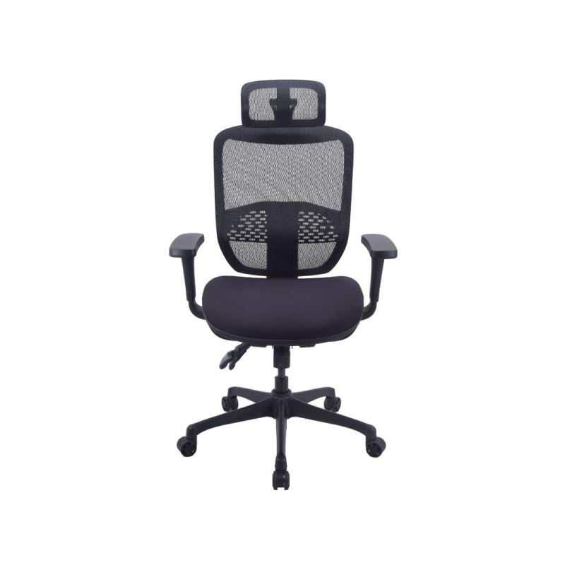 เก้าอี้เพื่อสุขภาพ Ergotrend Ergo Joy Plus Ergonomic Chair