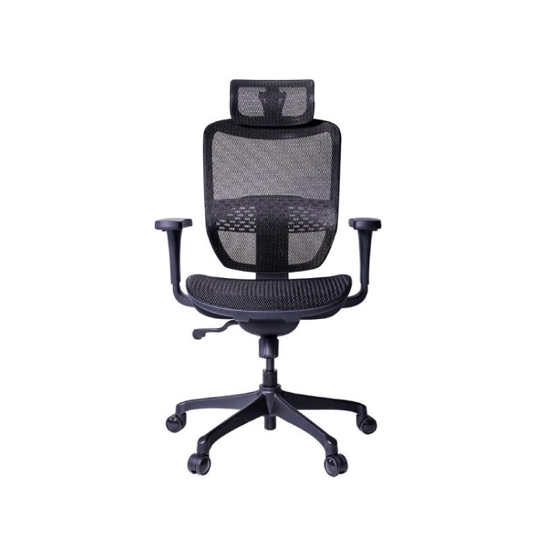 เก้าอี้เพื่อสุขภาพ Ergotrend ERGO JOY PRO Ergonomic Chair