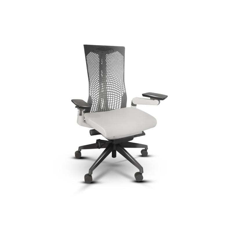 เก้าอี้เพื่อสุขภาพ Bewell Cuddle Ergonomic Chair