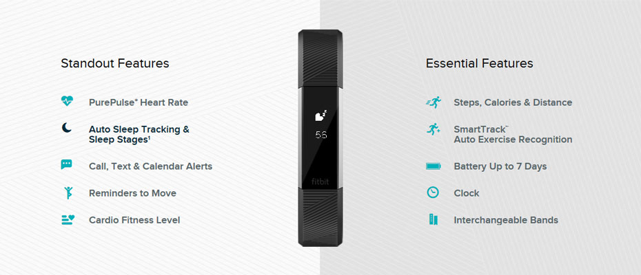 Fitbit Alta HR Large Fitness Tracker ราคา