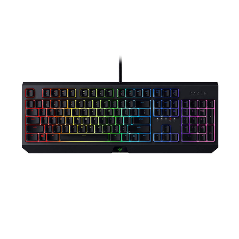 คีย์บอร์ด Razer Blackwidow 2019 Mechanical Keyboard