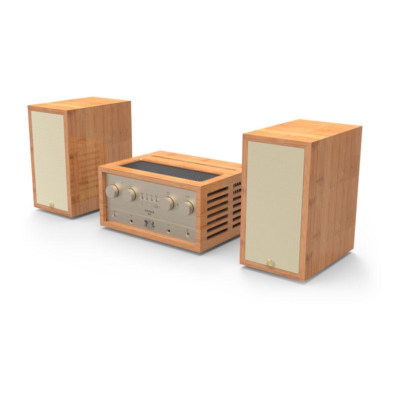 ลำโพง iFi Retro 50 Stereo Speaker